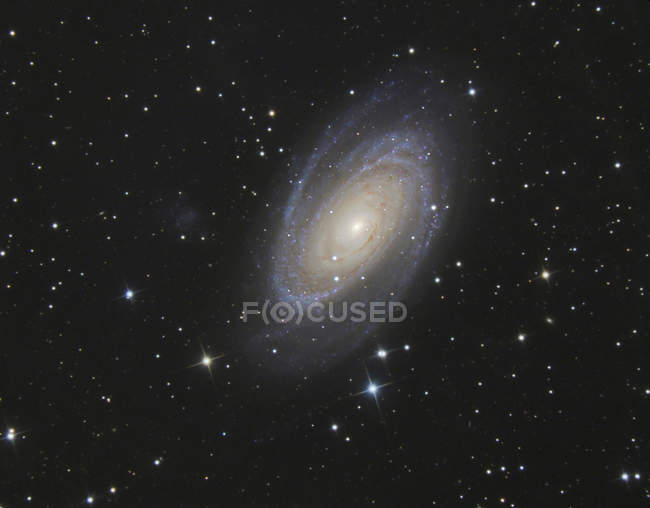 Astrophotography, Spiral galaxy Messier 81 or Bode's Galaxy — Foto stock