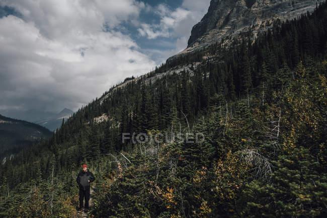 Canadá, Colúmbia Britânica, Parque Nacional Yoho, caminhadas em Mount Burgess — Fotografia de Stock
