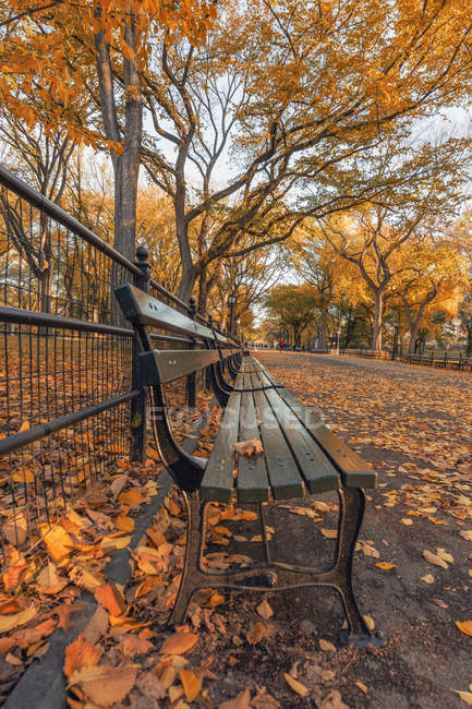 États-Unis, New York, Manhattan, Central Park en automne — Photo de stock