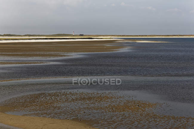 Germany, North Frisia, Sylt, Wadden sea near List — Stock Photo