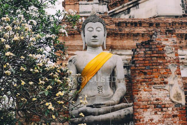 Таїланд, Аюттхая, ВАТ Яй Chaya Mongkhon, статуя Будди — стокове фото