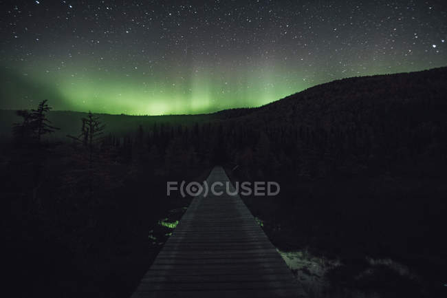 Canada, British Columbia, Liard River Hot Springs Provincial Park, Northern Lights, starry sky at night — Stock Photo