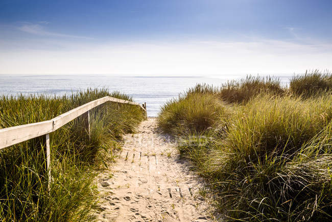 Germany, Schleswig-Holstein, Sylt, path through dunes — Stock Photo