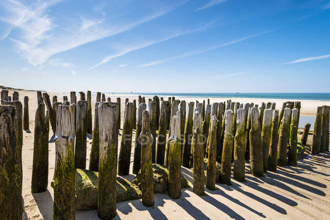 Germany, Schleswig-Holstein, Sylt, North Sea, breakwaters on the beach — Stock Photo