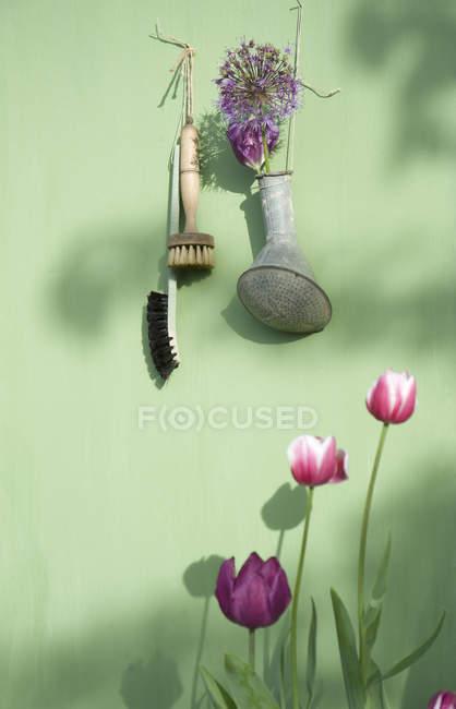 Украшение с цветами висит на ярко-зеленой стене — стоковое фото