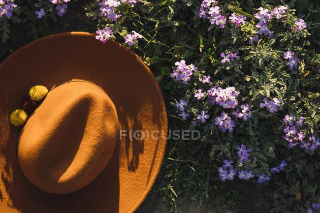 Sombrero en prado de flores - foto de stock