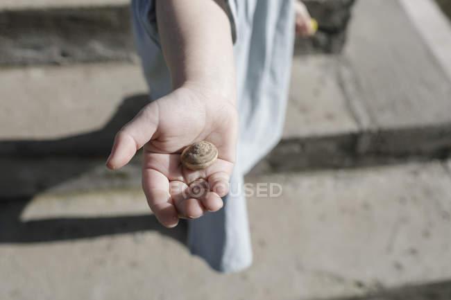 Snail shell on little girl's palm — Stock Photo