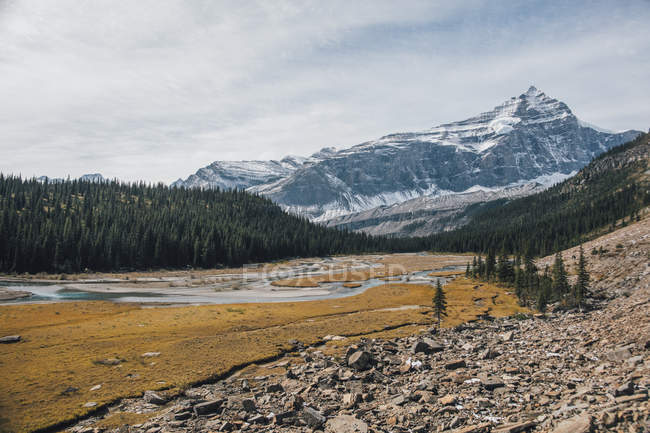 Canadá, British Columbia, Rocky Mountains, Mount Robson Provincial Park, Fraser-Fort George H, Robson River — Fotografia de Stock
