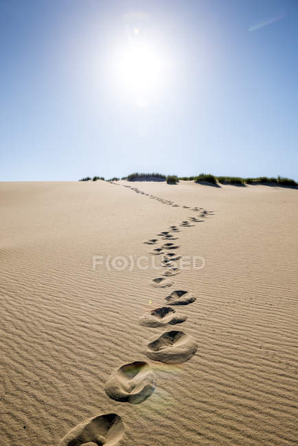 Germany, Schleswig-Holstein, Sylt, dune, sand with footmarks — Stock Photo