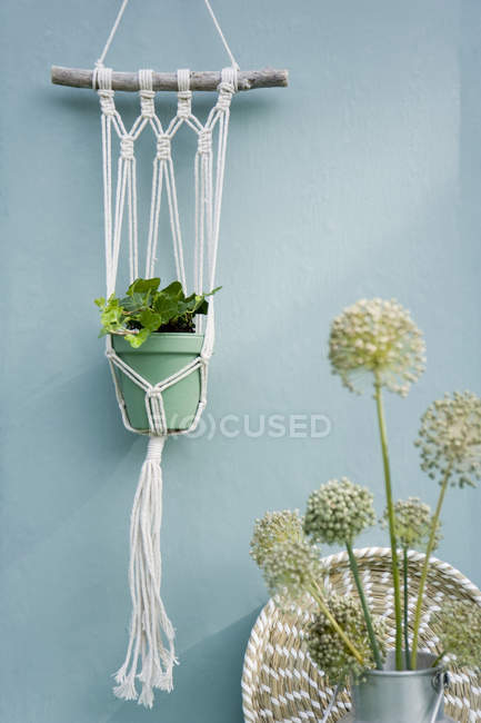 Do it yourself, Makramee attachment, ivy, braided tray, leek blossom — Stock Photo