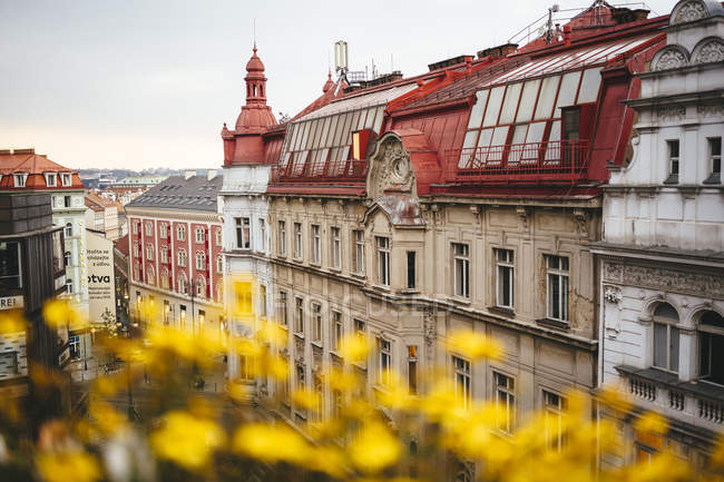 Czechia, Prague, view to row of old houses from above — Stock Photo