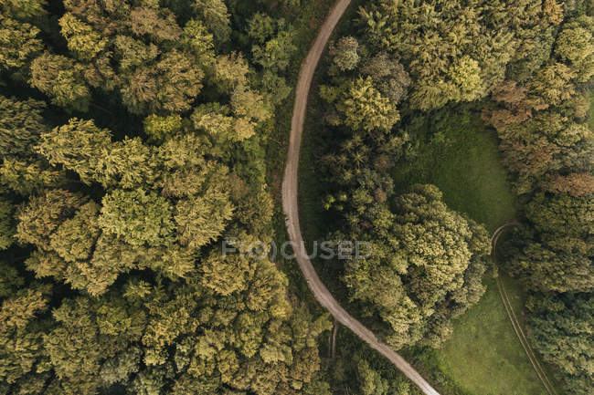 Austria, Lower Austria, Vienna Woods, Biosphere Reserve Vienna Woods, Aerial view of dirt road and forest in the early morning — Stock Photo
