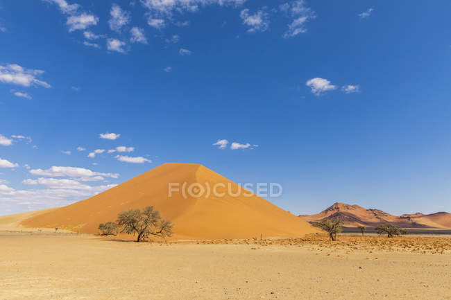 Africa, Namibia, Namib desert, Naukluft National Park, sand dune 40 — Stock Photo