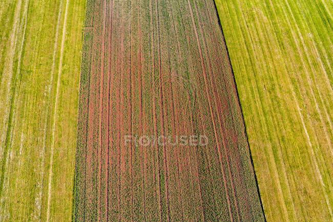 Germany, Baden-Wuerttemberg, Rems-Murr-Kreis, Aerial view of fields — Stock Photo