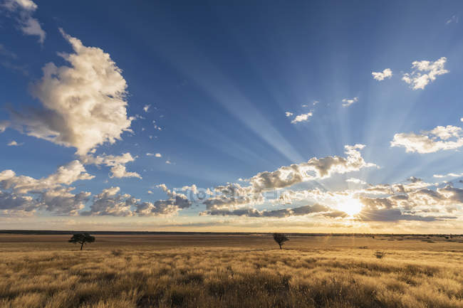 Africa, Botswana, Kgalagadi Transfrontier Park, Mabuasehube Game Reserve, Mabuasehube Pan at sunrise — Stock Photo