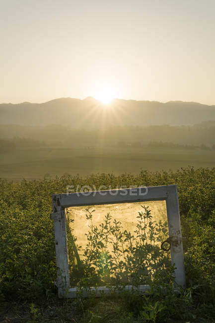 Italia, Toscana, Borgo San Lorenzo, alba sul paesaggio rurale con cornice in campo — Foto stock