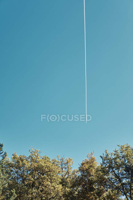 Bulgaria, Sofia, Rami di un albero autunnale contro un cielo con una traccia da un aeroplano — Foto stock