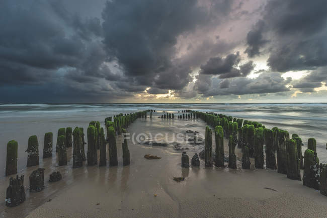Germany, Schleswig-Holstein, Sylt, Rantum, groynes on West beach — Stockfoto