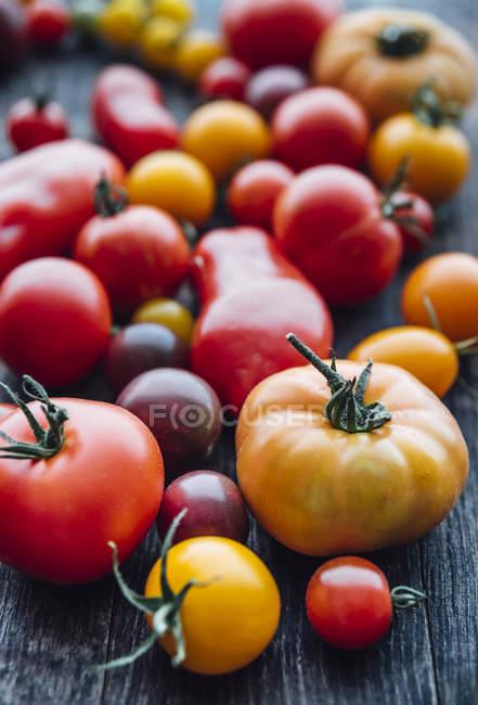 Sortes diferentes dos tomates no fundo do woodden — Fotografia de Stock
