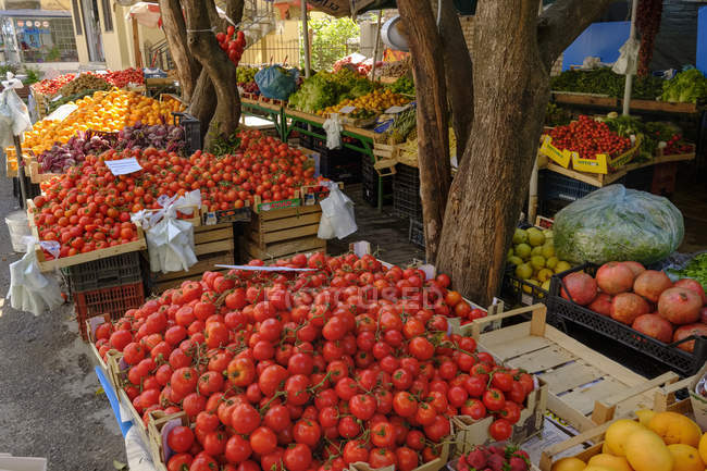 Albania, Tirana, bancarella con pomodori, verdure e frutta — Foto stock