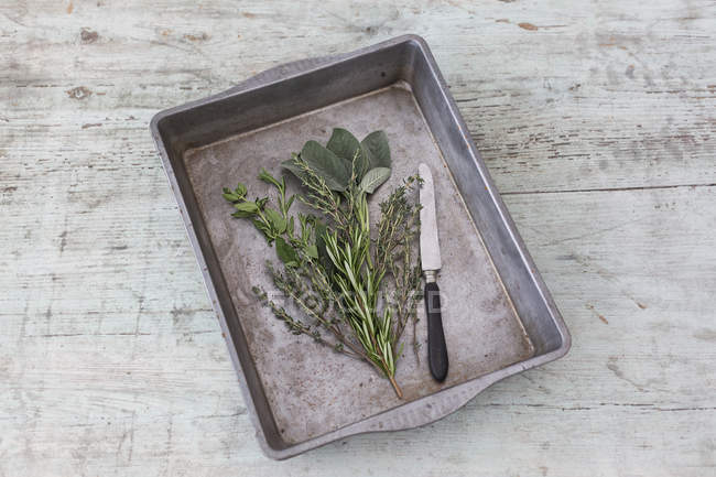 Roasting tray with fresh Provencal herbs and knife on wood — Stock Photo