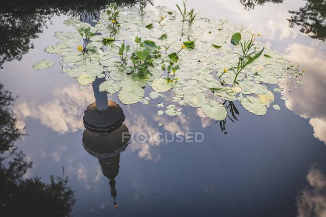 Germany, Hamburg, Planten un Blomen, tv tower mirroring in the water — Photo de stock