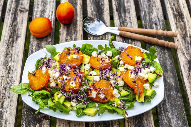 Green salad with fried apricots, avocado, feta cheese and radish sprouts — Stock Photo