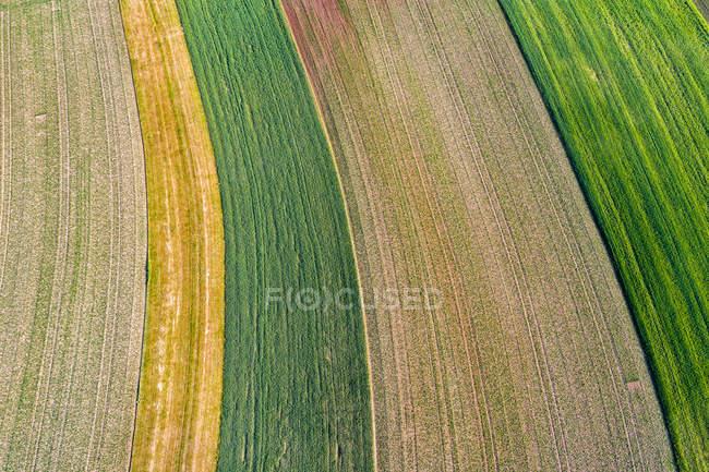 Germania, Baden-Wuerttemberg, Rems-Murr-Kreis, Veduta aerea dei campi — Foto stock