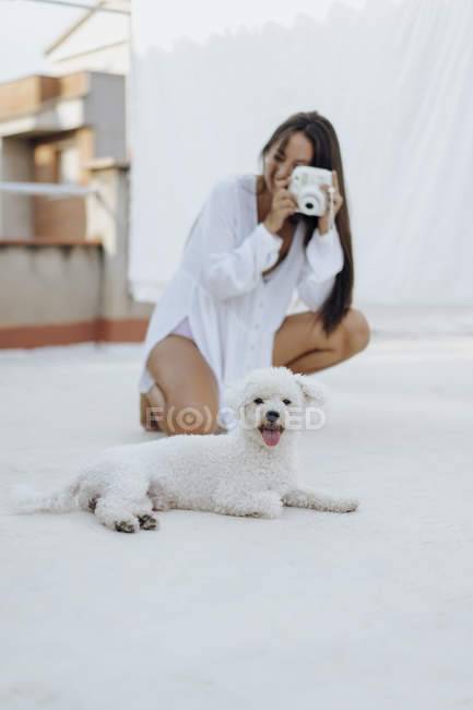 Portrait of white dog lying on roof terrace while young woman on background taking photo — Stock Photo