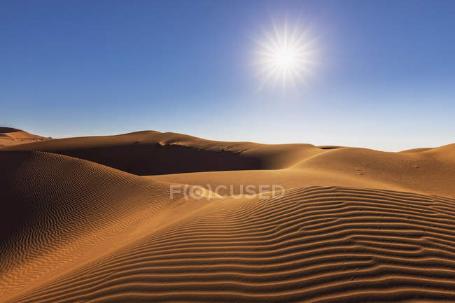 Africa, Namibia, Namib desert, Naukluft National Park, sand dune against the sun — Stock Photo