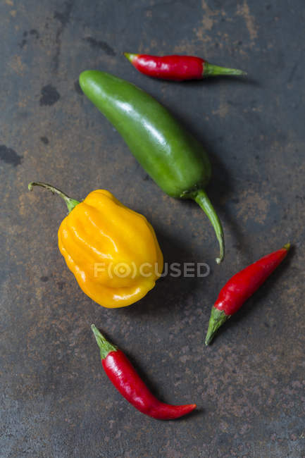 Variuos sorts of chili pods on rusty metal — Stock Photo