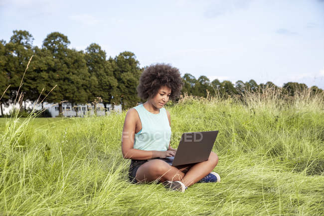Woman sitting on meadow and using laptop — Stock Photo