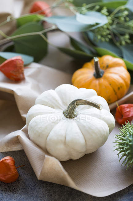 Autumnal decoration, ornamental pumpkins — Stock Photo