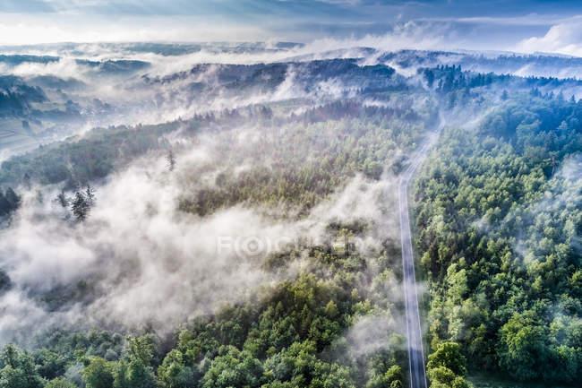 Germania, Baden-Wuerttemberg, Albo svevo, Veduta aerea di Schurwald, nebbia mattutina — Foto stock