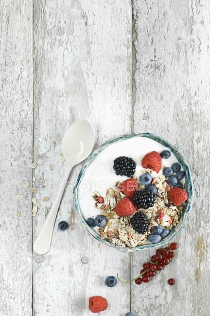 Schüssel Müsli mit Naturjoghurt und Beeren — Stockfoto