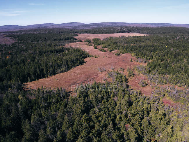 USA, West Virginia, Aerial view of Dolly Sods Wilderness area — стокове фото