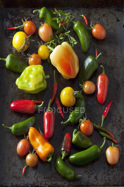 Varie verdure biologiche su terreno scuro — Foto stock
