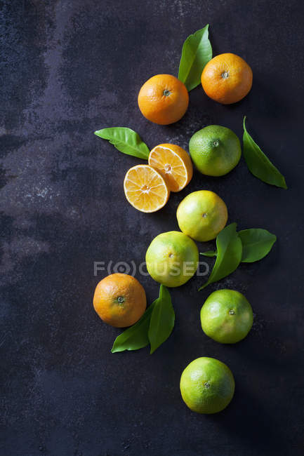 Organische Mandarinen und Zitronen auf dunklem Hintergrund — Stockfoto
