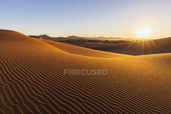 Africa, Namibia, Namib desert, Naukluft National Park, sand dunes in the morning light against the morning sun — Stock Photo