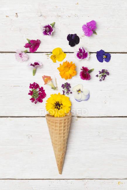Конус мороженого и съедобные цветы на белом дереве — стоковое фото