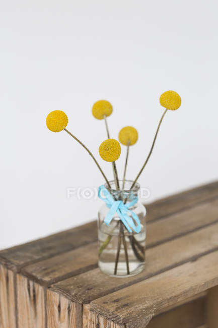 Yellow flower heads in vase — Stock Photo