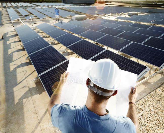 Задний вид инженера глядя на план перед солнечной электростанцией — стоковое фото