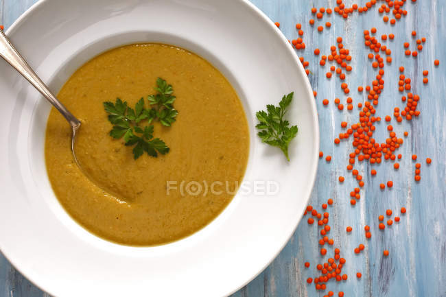 Dish of red lentil soup — Stock Photo