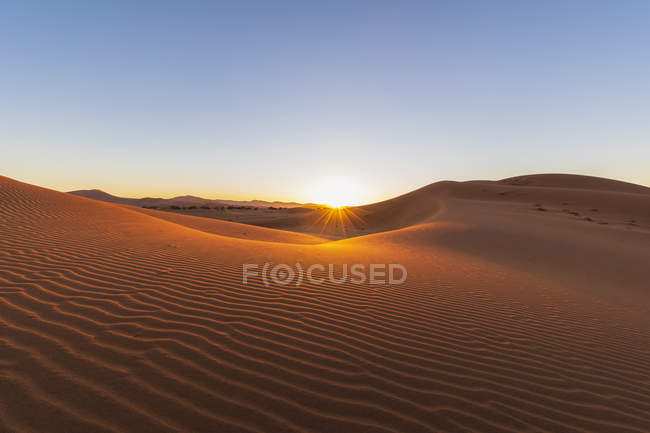 Africa, Namibia, Namib desert, Naukluft National Park, sand dunes against the morning sun — стокове фото