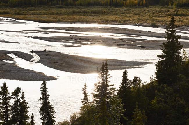 EUA, Alaska, Parque Nacional de Denali, Rio no luminoso — Fotografia de Stock