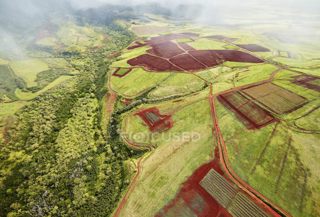 Usa, Hawái, Kauai, paisaje de campo, vista aérea - foto de stock