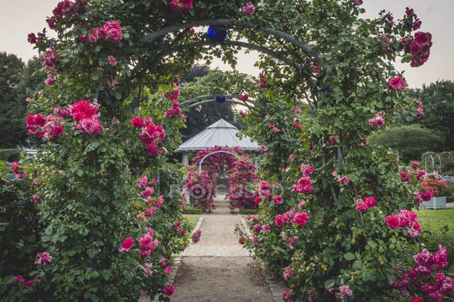 Germany, Hamburg, Planten un Blomen, rose garden, pavilion — Photo de stock