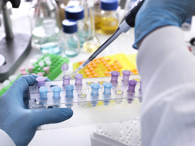 Research experiment, scientist pipetting sample into vials — Stock Photo