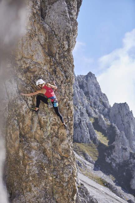 Austria, Innsbruck, Nordkette, arrampicata femminile in parete — Foto stock