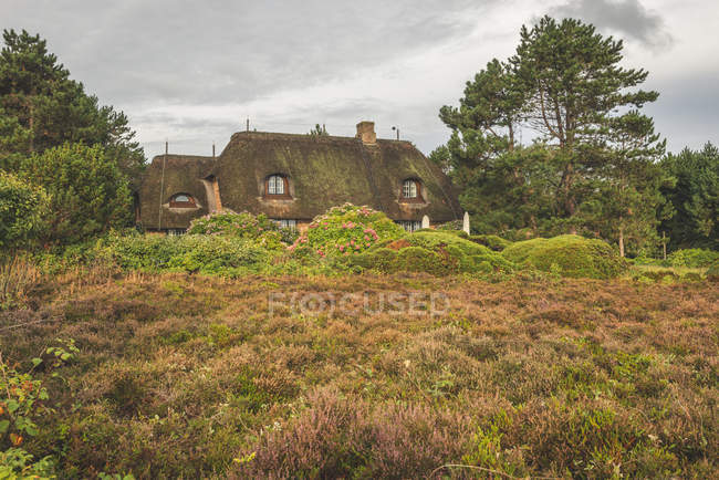 Germany, Schleswig-Holstein, Sylt, thatched-roof house in Braderuper Heide — Stock Photo